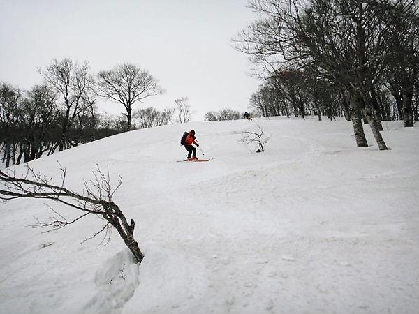 スキー場が計画されていたという斜面